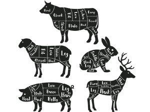 Illustration of meat cuts on cow, sheep, rabbit, hog and deer