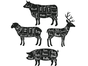 Illustration of meat cuts on cow, sheep, hog and deer